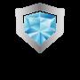 Icon 100x100 px - Diamond Guard Caoting-01