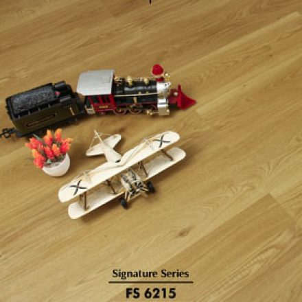Product Pic v1 - 500x750 - FS 6215-01